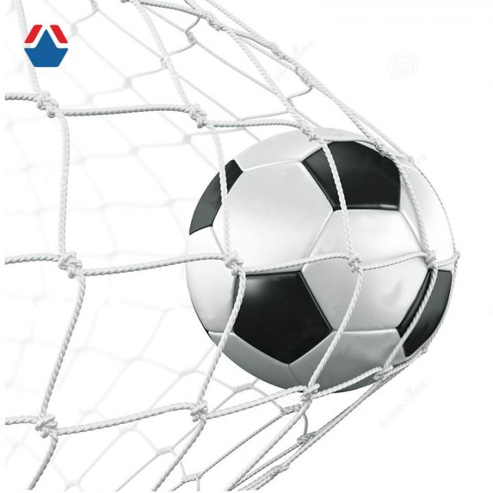 Сетка для гашения мяча (гандбол/минифутбол) 1,8 (3000х2000)