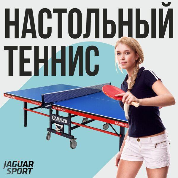 На наш склад поступили теннисные столы и аксессуары